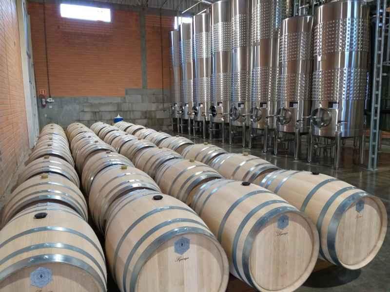 Selos de controle de procedência dos vinhos já são uma realidade no Rio Grande do Sul FAMÍLIA BEBBER/DIVULGAÇÃO/JC